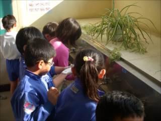 手洗い教室②